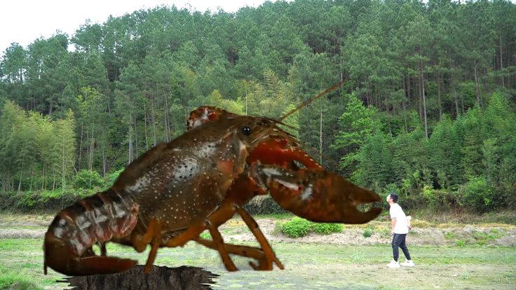 短剧:遇21只龙虾合体袭击,拿回家烧香辣龙虾,阿花吃完说我还
